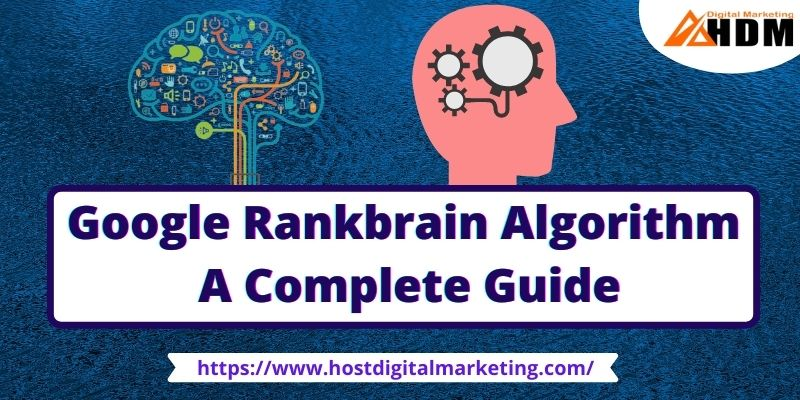 What is Google Rankbrain Algorithm Update in SEO
