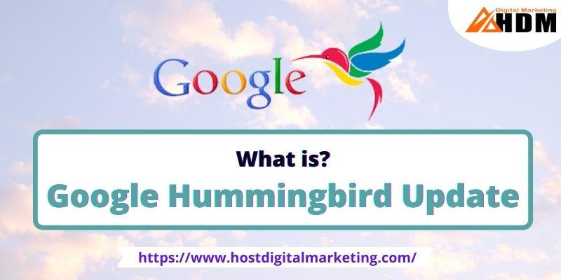 What Is Google Hummingbird Update
