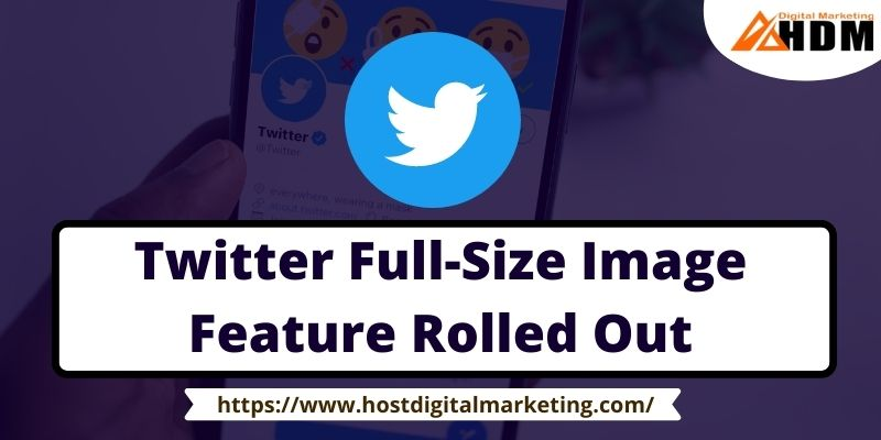 Twitter Full-Size Image Feature Rolled Out